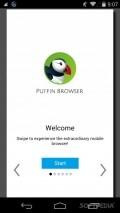 Puffin Web Browser Скачать На Андроид